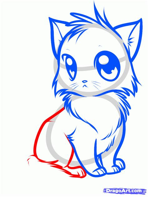 draw  cute anime cat step  step anime animals