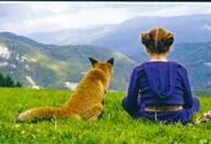 Το παιδί και η αλεπού