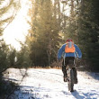 Selective Focus: Getting Around - Perfect Duluth Day