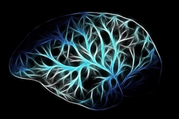 How the Brain and Personality Provide Protection Against Emotional Distress