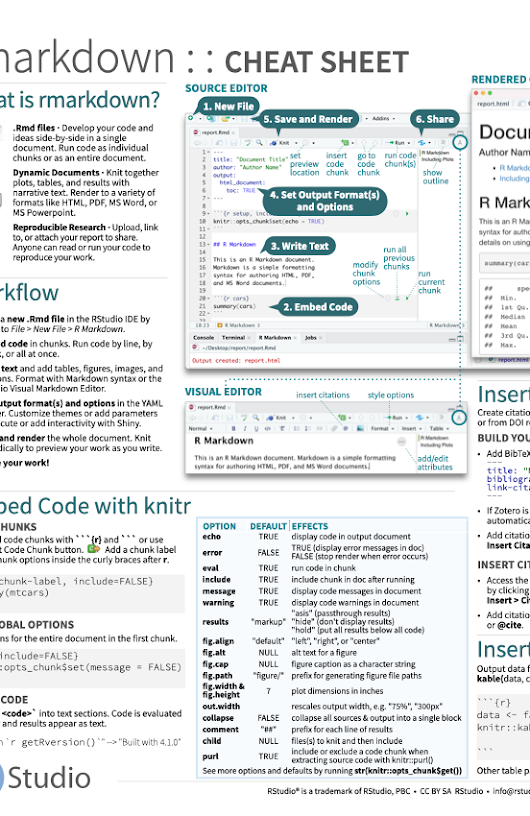 Shiny - The R Markdown Cheat sheet