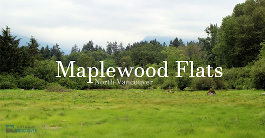 Maplewood Flats in North Vancouver | Outdoor Vancouver
