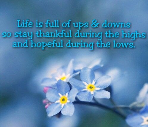 Life Is Full Of Ups And Downs Quotes. QuotesGram