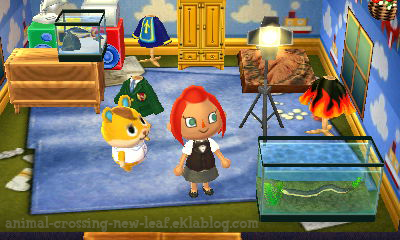 Le Bronzage Animal Crossing New Leaf