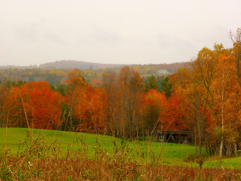 Eastern Townships' Foliage