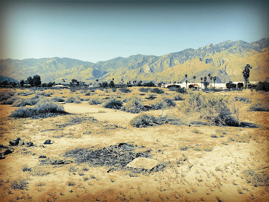 Deserted Desert Palm Springs by Amyn Nasser