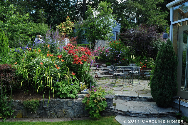 A lush backyard patio