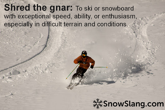 Shred the gnar meaning and origin - SnowSlang.com
