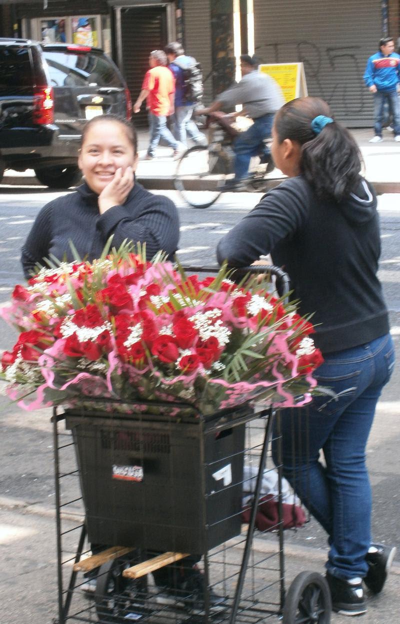 Rosas !!