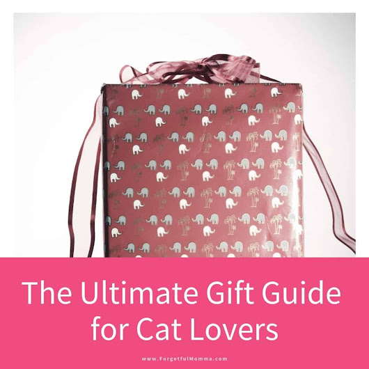 The Ultimate Gift Guide for Cat Lovers - Forgetful Momma