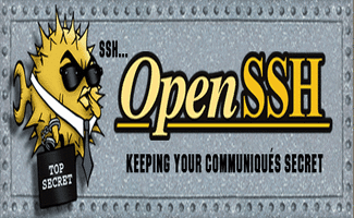 Install OpenSSH in Linux