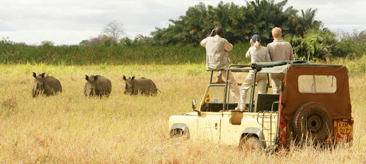 Are You Geared Up For Travel To East Africa For A Closer Look Of Wildlife? - PEACEMAKERS EXPEDITION & SAFARI
