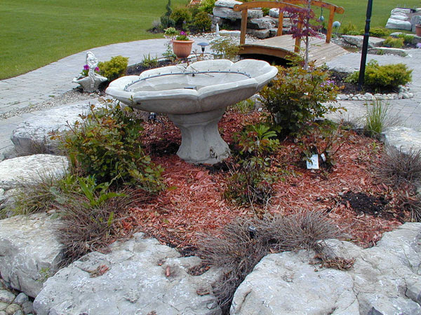 Back Yard Landscaping Ideas with Water Feature