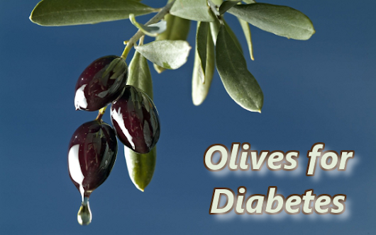Study Finds Olive Leaf Extract Useful in Diabetes Management