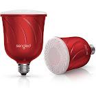 Sengled Pulse - LED light bulb - E26 - 8 W - warm white light - 2700 K - candy apple (pack of 2)