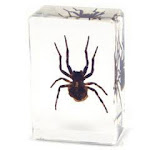 Ed Speldy East PW114 Small Paperweight - Spider