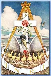 Il pellicano, uno dei simboli rosacrociani