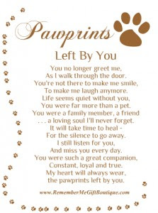 Quotes 3 705 All New Inspirational Quotes On Losing A Dog
