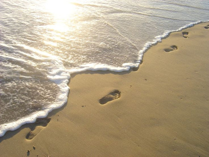 Quotes About Little Footprints 33 Quotes