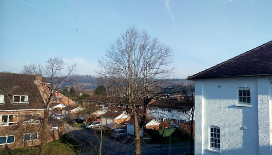 The view from my new desk - Ranmore Common