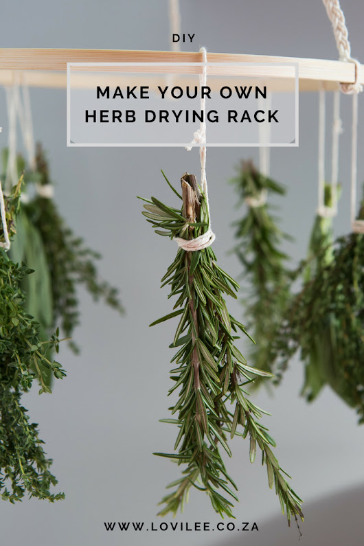 A DIY that will make air drying herbs easy! | Lovilee Blog