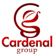 Marketing Growth Specialist- The Cardenal Group