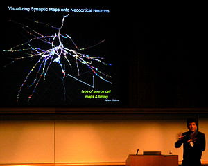 Henry Markram: Visualizing Synaptic Maps onto ...