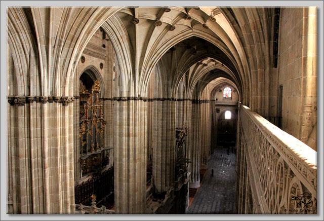 15 Salamanca