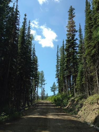 Driving to Three Lakes Peak