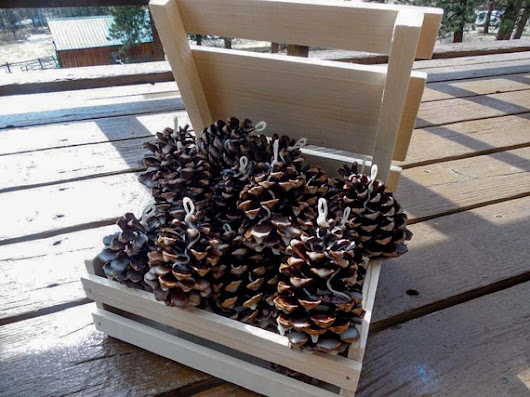 Bundle of Pine Cone Fire Starters 25