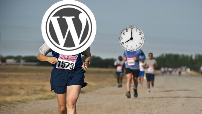 [100% Off UDEMY Coupon] - WordPress Run : Create a Website & Get Traffic in < 1 hour