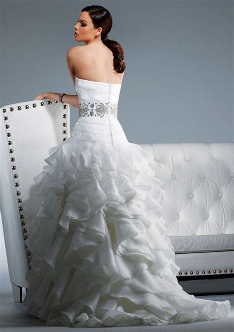 2011 Wedding Dresses Inspired By The Stars  David Tutera