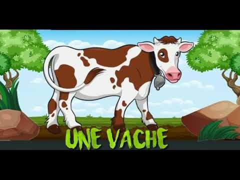 أسماء الحيوانات بالفرنسية و أصواتها،