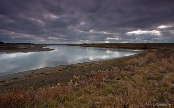 reflections in quiet water