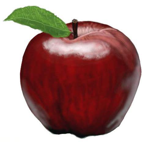 draw  apple draw step  step