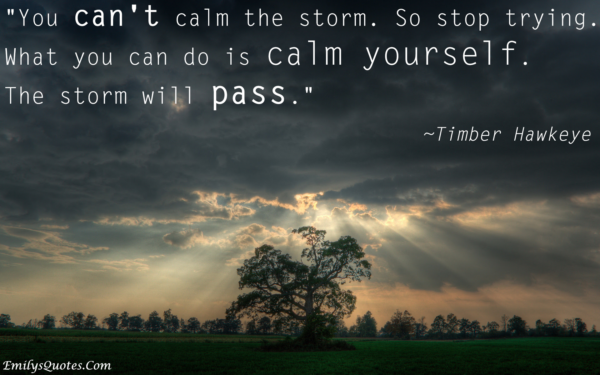 You Cant Calm The Storm So Stop Trying What You Can Do Is Calm