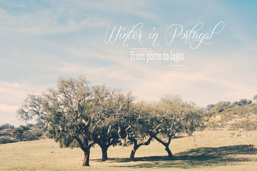 Winter in Portugal / Travel Photography by Katinka Stone