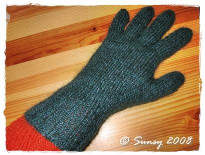 fingerhandschuh2008.1c
