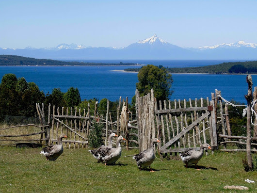 Rural tourism in Chiloe Island, one of Chile's hidden gems | Sumak Travel