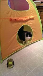 Big tent, little taxi