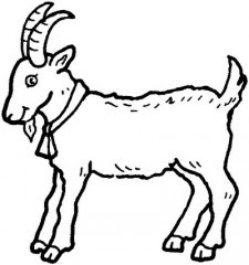 disegni di animali da colorare,disegni da colorare,disegni da stampare e colorare,animali da colorare,vari animali da colorare