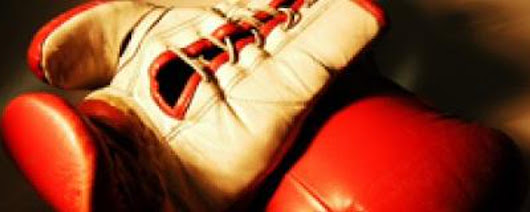 Top Boxing Gloves (@GlovesTop) | Twitter