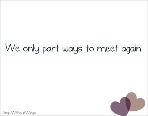 We Only Part Ways To Meet Again Goodbye Quote Quotespicturescom