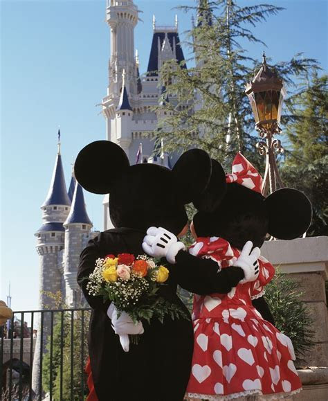 53 best images about Walt Disney World   Valentine's Day