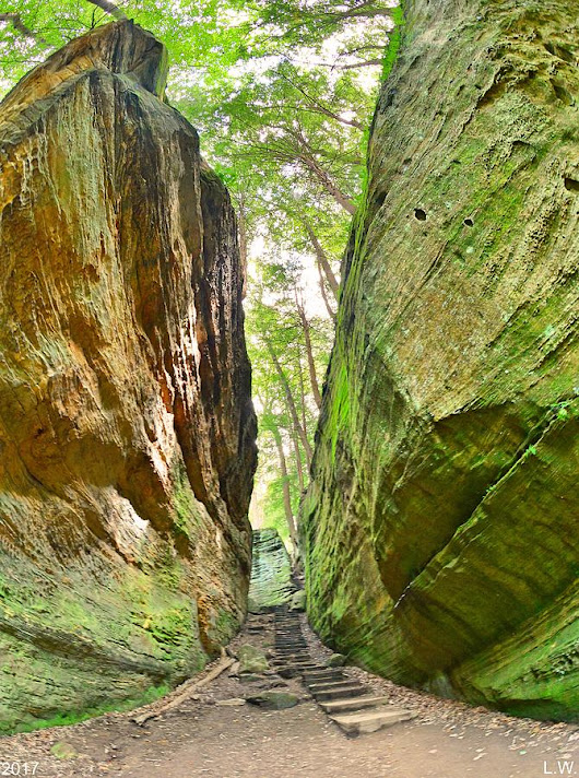 Cantwell Cliffs Trail Hocking Hills Ohio by Lisa Wooten