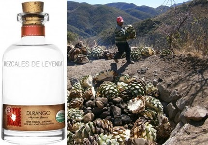 All tequila is mezcal, but not all mezcal is tequila. Find out why on our list of the Top 10 Mezcals...