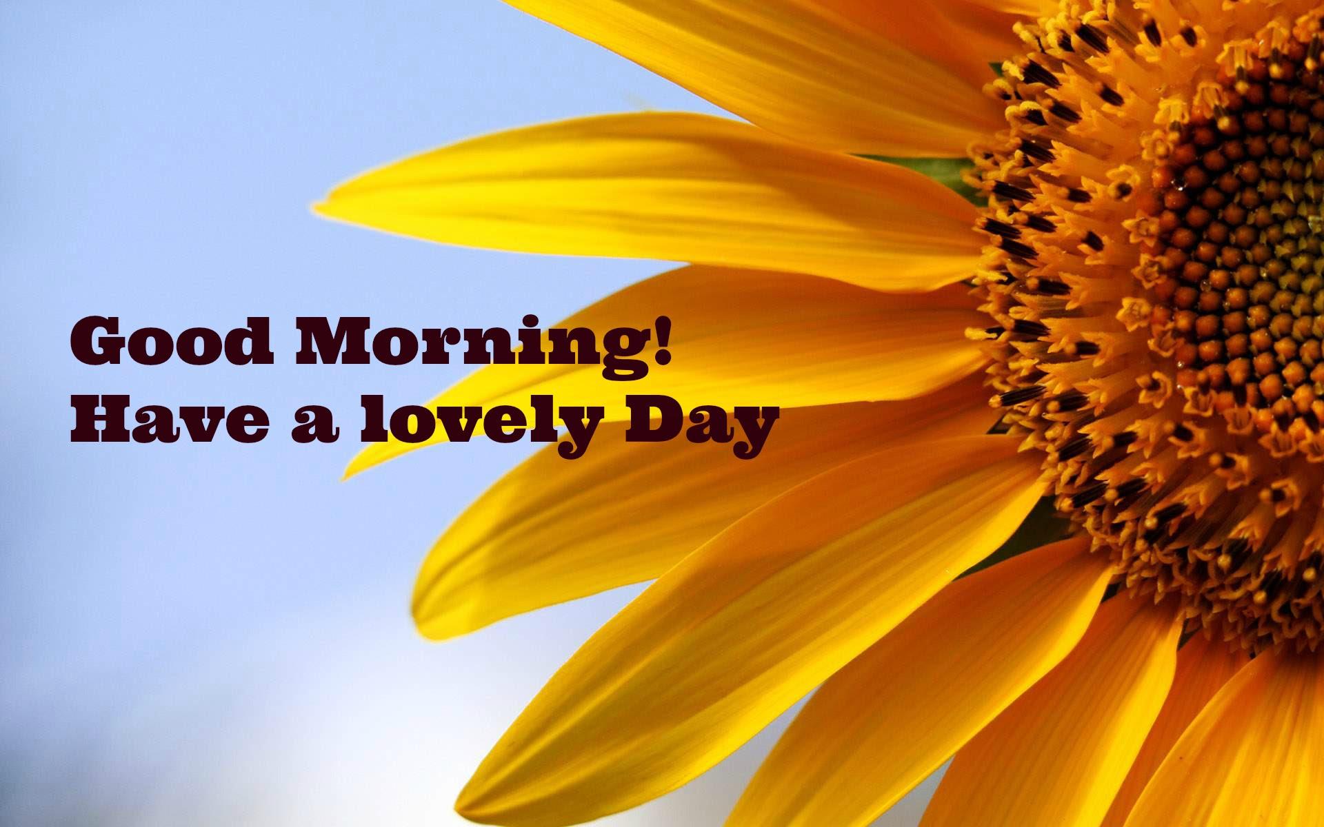 Good Morning Encouraging Quotes. QuotesGram