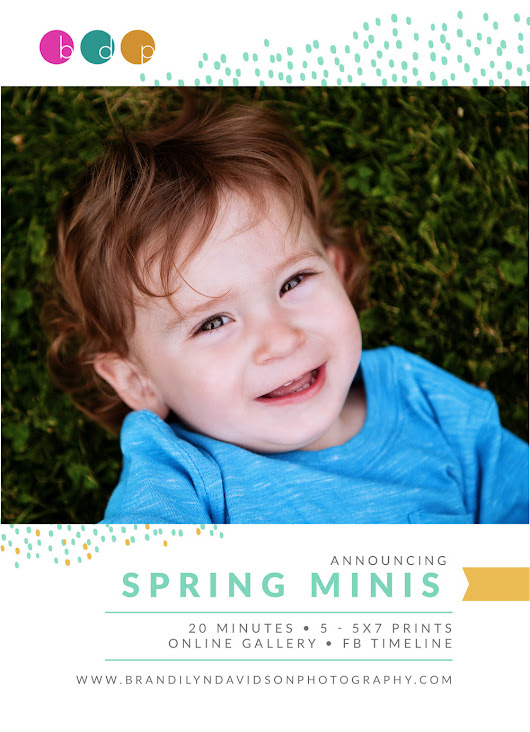 2017 Spring Mini Sessions - WIN YOURS FREE!