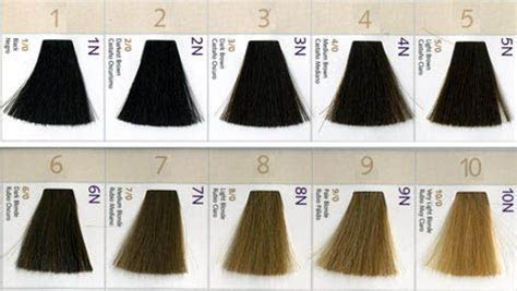 natural hair level color chart google search hair color chart