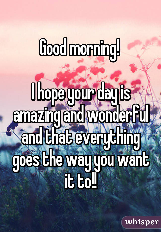Good Morning I Hope Your Day Is Amazing And Wonderful And That